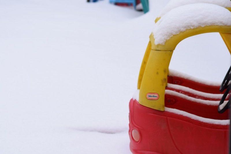 Surviving Snowmageddon